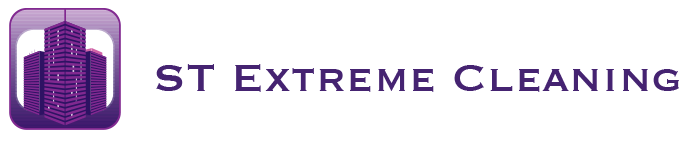 ST Extreme Cleaning Logo